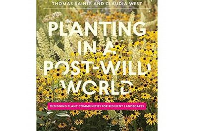 Masterclass With Thomas Rainer, 'Planting In A Post-Wild World'