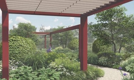 The RHS Bridgewater Garden comes to the RHS Chelsea Flower Show
