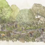 RHS Back to Nature Garden to be donated after Chelsea