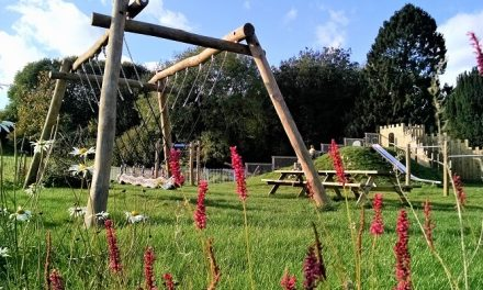 Growing trend for natural play in garden design