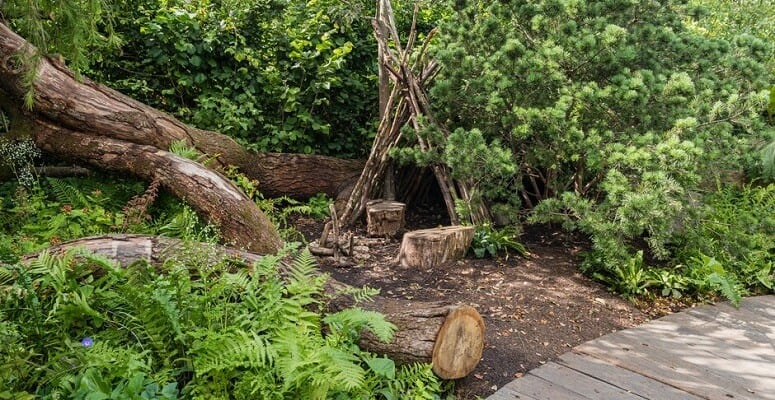 RHS Back to Nature Garden for RHS Hampton Court unveiled